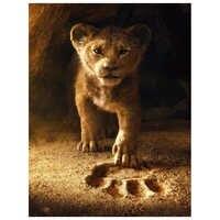 Full Square Round Drill 5D DIY Diamond Painting Lion king 3D diamond Embroidery Cross Stitch rhinestone Mosaic Animal gift AA311