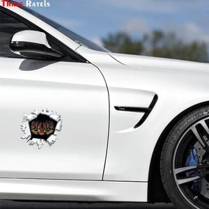 Image 4 - Three Ratels LCS271# 15x17см Тигр в пуле полноцветные наклейки на авто наклейки на машину наклейка для автомобиля автонаклейка стикеры