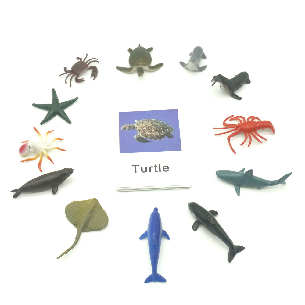 Montessori Toys Ocean Animal Match Cards And Figurines, Matching Game  Language Learning Materials Juguetes Montessori L1046F