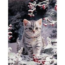 """Полный 5D Diy Daimond картина """"Снежный котенок"""" 3D вышивка крестиком квадратные/круглые стразы полная приклеенная Алмазная картина вышивка"""