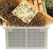 Queen Bee Rearing System for Producing for Apis mellifera Migratory bee larvae Beekeeping Tools For Beekeeper Supplies