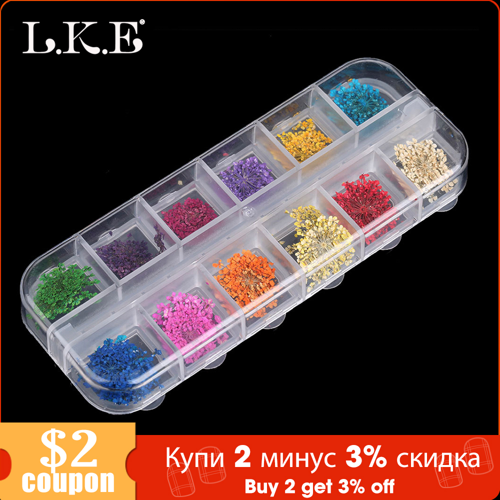 LKE 12 Color/Set  Nail Glitter Mixed Dried flowers Color Nail Modification for UV Gel Flakes Nail Art Decoration Sparkly DIY Tip-in Nail Glitter from Beauty & Health