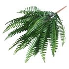 7 Branches Green Art...