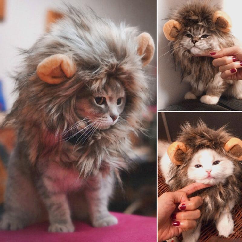 Divertido y lindo disfraz mascota gato Peluca de Melena De León sombrero gato y perro Halloween disfraz con orejas mascota ropa Navidad vestir|Ropa para gatos| - AliExpress