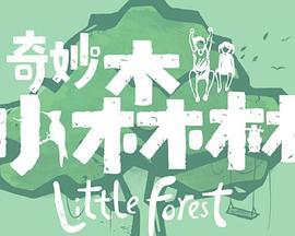 奇妙小森林