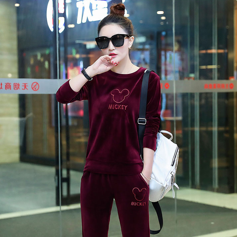 2019 winter women's new pleuche fashion leisure embroidery fleece casual velvet suits female 2 piece sets tracksuit for women