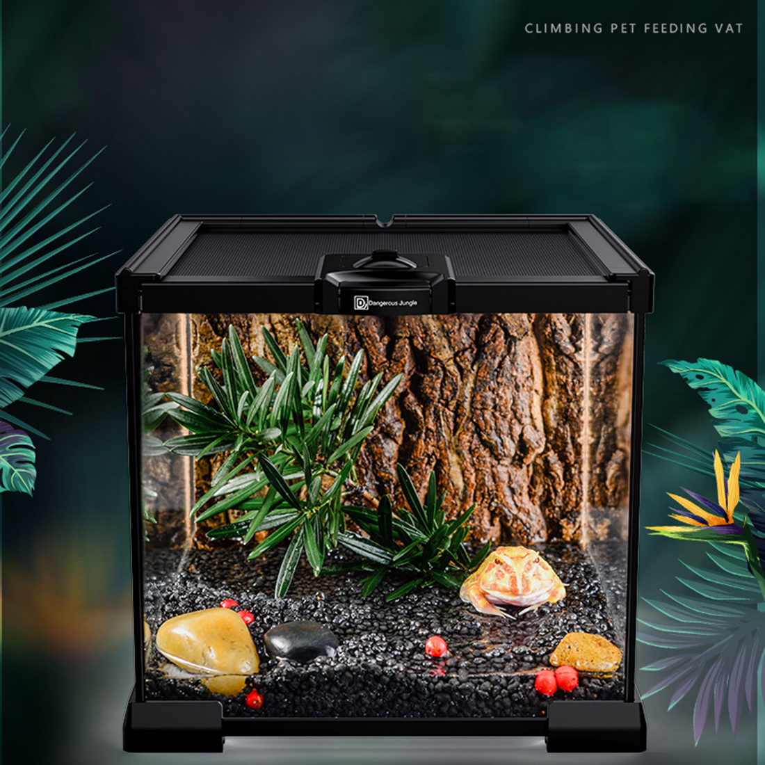 Hot 20 X 20 X 16 Reptile Terrarium Climbing Pet Feeding Box Stackable Beetle Spiders Breeding Container - Black + Transparent