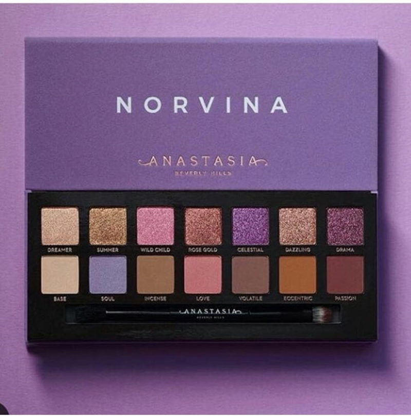 Anastasia Makeup Make Up NORVINA EYE SHADOW PALETTE Beverlying Hills Makeup Powder Contour Highlighter Face Powder Blusher