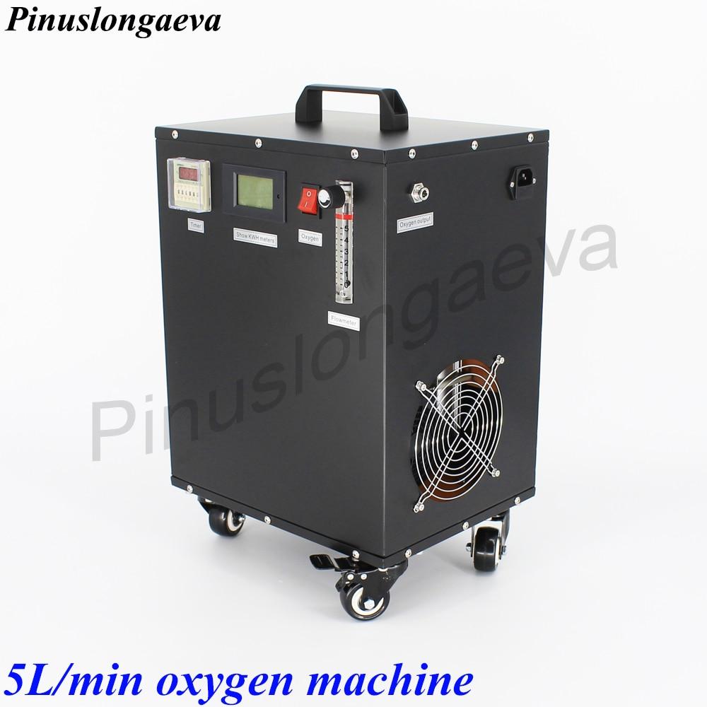 Pinuslongaeva PSA 3L 5L 10L 15L 20L 30L 96% Imported Molecular Sieve High Concentration Medical Home Oxygen Generator Machine