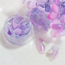 15pcs Mini Dry Flower Nail Art Decoration Petals Set Natural Hydrangea Eternal Pressed Sticker for DIY Crafts