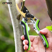 Sécateurs de jardin, ciseaux d'élagage d'arbres fruitiers, sécateurs de branches de bonsaï, outils de coupe