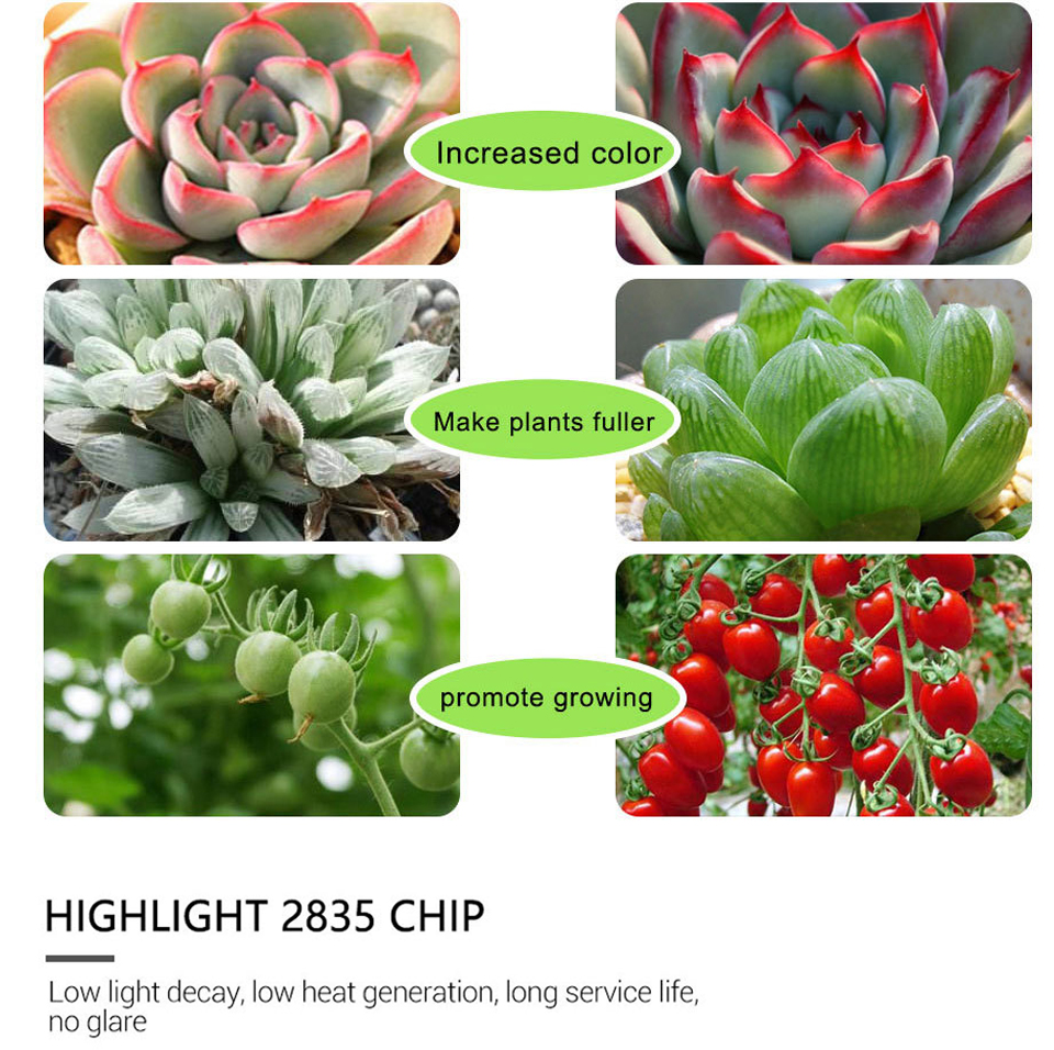 FOXGBF LED Full-spectrum light belt to promote plant growth, sunlight effect, indoor planting succulent and leafy plate planting (5)