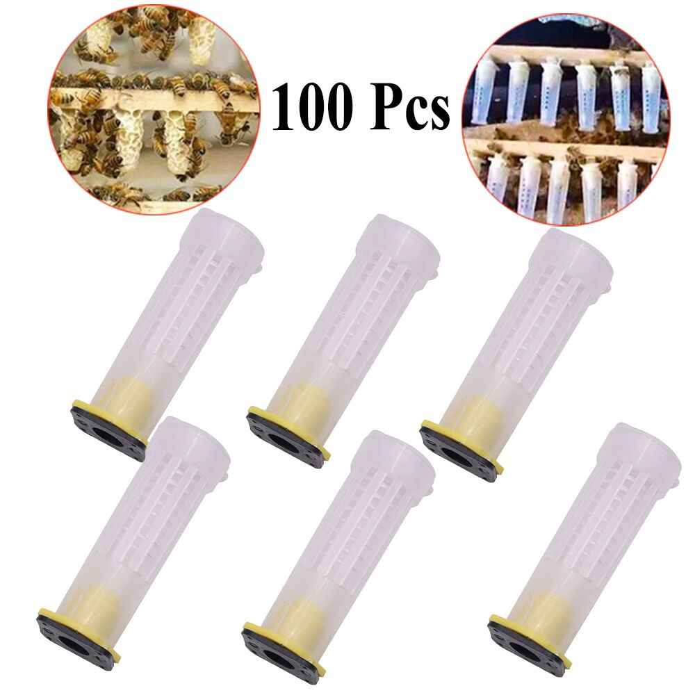 50PCS Bee Queen Cages Plastic Protective Cover Cage Cell Box Cup Rearing B D6X2