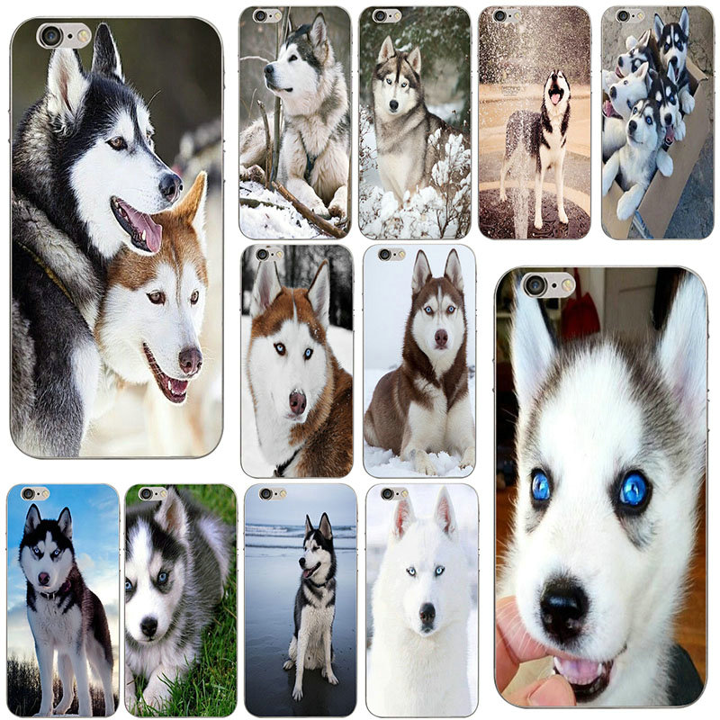 Aladdin <font><b>Siberian</b></font> <font><b>Husky</b></font> Dog Case Cover Soft TPU Silicone Phone Cases for iphone 4 4s 5 5s se 6 6s plus 7 7plus 8 8plus Shell Bags image