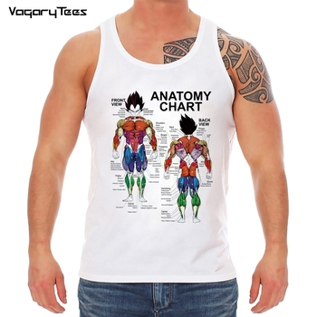 Anime Z Goku Muscle Diagram Tank-top Summer Saiyan Dbz Japan Vegeta Harajuku brand clothing - discount item  43% OFF Tops & Tees