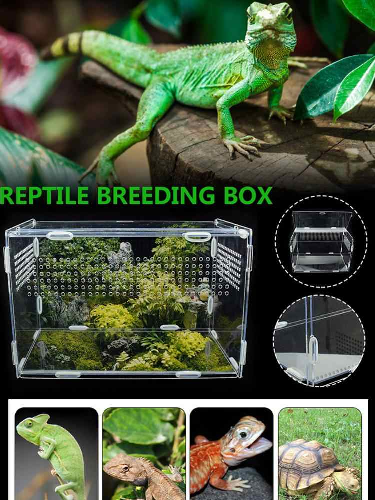 Large Acrylic Terrarium Reptile Box Durable Transparent Pet Supplies For Cold Blooded Animals Reptile Pet Insect Home Decoration Terrariums Aliexpress