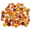 30/50 шт высокое качество натуральный Красочные Хризантема сушенный цветочный головной свадебное платье с цветочным узором в виде центральн...