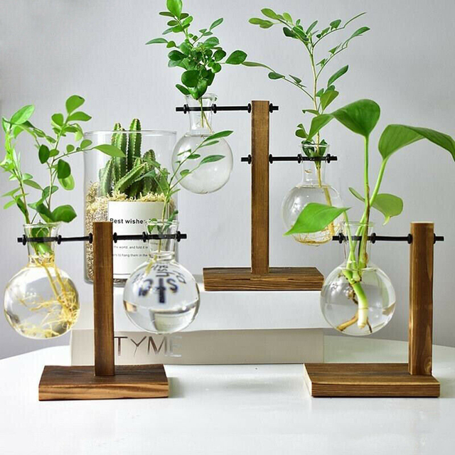 1Set Glass Vase Home Garden Glass Hydroponic Container Table Desktop Transparent Glass Bulb Vase Flower Pot Home Decor 2