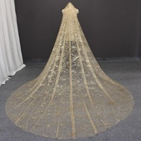 Bling Dust Champagne Long Wedding Veil Heavy Cathedral Bridal Veil with Comb 3 Meters Long Veil for Bride Wedding Accessories