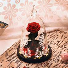 Стеклянный растительный Террариум розы цветы красота и чудовище красный Зачарованный светодиодный Цветок розы комнатные украшения подарки