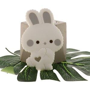 Image 3 - Fkisbox 10 Bộ Gặm Nhấm Silicone Thỏ Bé Xúc Xắc Thỏ KHÔNG CHỨA BPA Trẻ Sơ Sinh Nhai Hạt Mọc Răng Phụ Kiện Vòng Cổ Mặt Dây Chuyền Đồ Chơi
