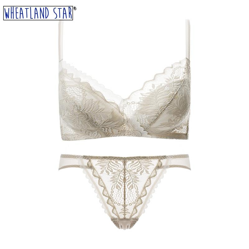 Sexy Lingerie for Women Wire Free Bra and Panty Set Lingerie Push Up Bra & Brief Sets Underwear Back Closure Hot Women Intimates