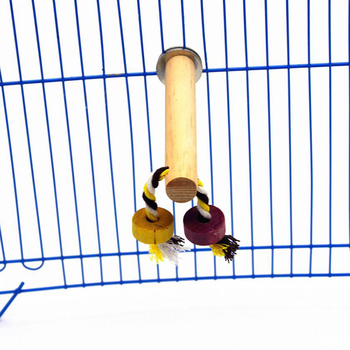 Cute Pet Birds Shower Perches Toys Bird Bath Standing Platform Rack Wall Suction Cup Parrot Budge Paw Grinding Stand Toy image