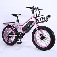 Fat tire electric bike 20 inch electric bicycle variable speed big wheel Beach and snow bicycle High carbon steel E bike