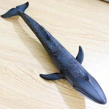 Kids Simulation Whale Model Toy Ocean Sealife Animals PVC Model Kids Learning Toy Gift Table Decor 27cm