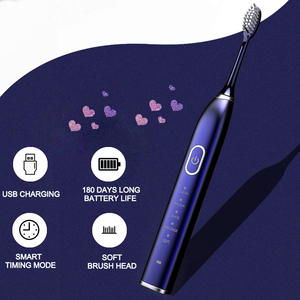 Automatic Electric Toothbrush 10 Brush Head Sonic wave Rechargeable Ultrasonic Teeth Brush Adult Replacement Heads Set 15 Modes