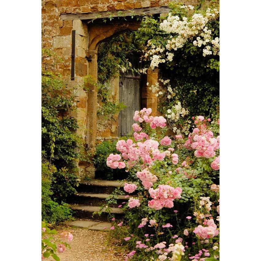 5x7ft الباب القديم الجدران النباتات الخضراء ملون الزهور مخصص استوديو الصور خلفية خلفية الفينيل 220 سنتيمتر x 150 سنتيمتر