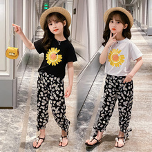 Summer Style Girls Clothing Suit Children's Flowere T-Shirt & Pants 2Pcs Sets Girls Clothes Kids Outfits 4 6 8 10 12 Years new spring autumn girls clothing sets kids sports suit casual girls cartoon t shirt pant 2pcs children clothes 4 6 8 10 12 years
