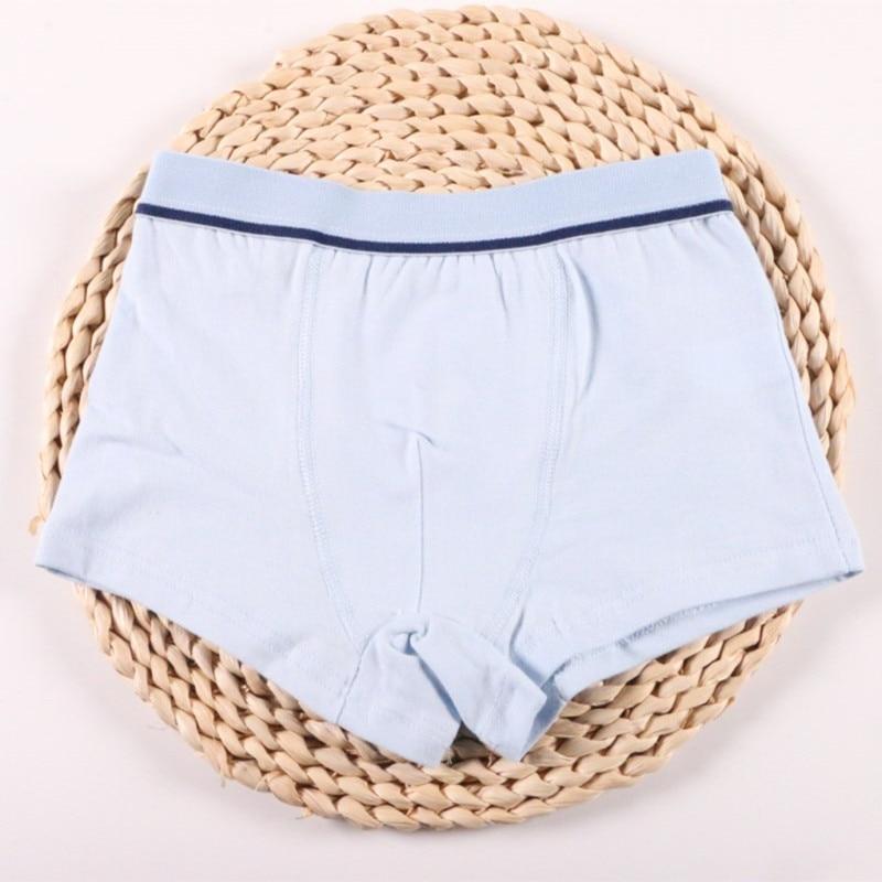 2Pcs/Lot Boys Underwear Pure Color Kids Shorts Panties Cotton Baby Children Boxer for Teenager Underpants 2-10Y 5