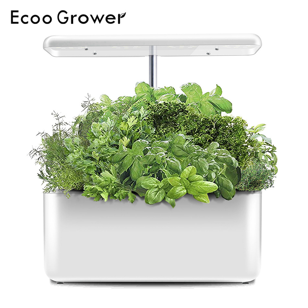 Hydroponics System Intelligent Box With Grow Light Ecoo Grower Indoor Cultivation Nursery Pots
