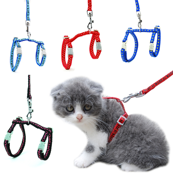 kitten harness pet leash cat harness outdoor walk for small cat puppy chihuahua pet harness leash cat products 2 pieces/lot Cat Harness Leash Adjustable Harness  Collar for Kitten Puppy Small Pet Outdoor Walking