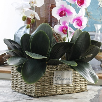 INDIGO- 50pcs Phalaenopsis Leaf Real Touch Green Artificial Orchids Leaves Wedding Floral Arrangment accessories Free Shipping