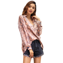 Blockbuster New V-collar Long-sleeve Blouse in Spring and Summer of 2019