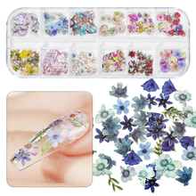 1Box 3D Mix Maple Leaf Christmas Wood Pulp Nail Flakes Emulation Butterfly Colorful Flowers Nail Art Sequins Manicure Decoration