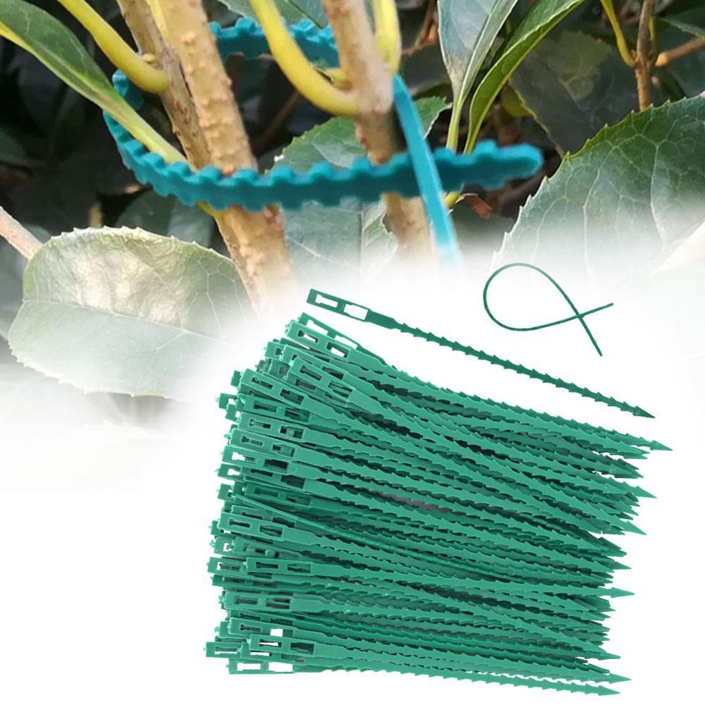 50/30 Pcs Fishbone Spur Green Landscape Reusable Garden Plastic Plant Belt Ties Tie Garden Fishbone Band Tools