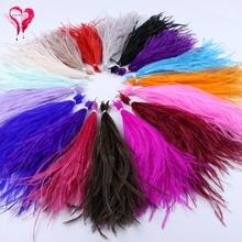 1 пачка крашения страусиных перьев кисточкой шелковое платье