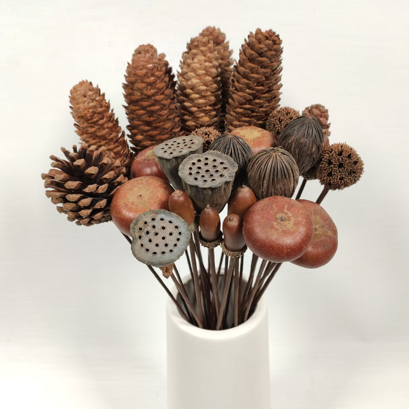 Real Natural Dried Flowers Pine Cones Lotus root Daisy Ornament Florists Home Decor Crafts Christmas New Year Wedding Decoration