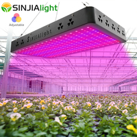 3000W LED Grow Light Full Spectrum Timing Color Switch High Power LEDs Growing Lamp for Flowers Plants Indoor Grow Tent