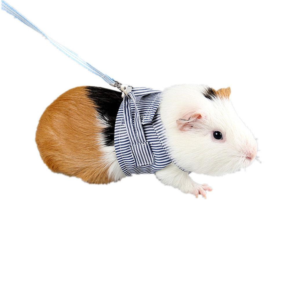 Pet Hamster Traction Strap Outdoor Training Soft Cotton Clothes Rope For Hamster Guinea Pig