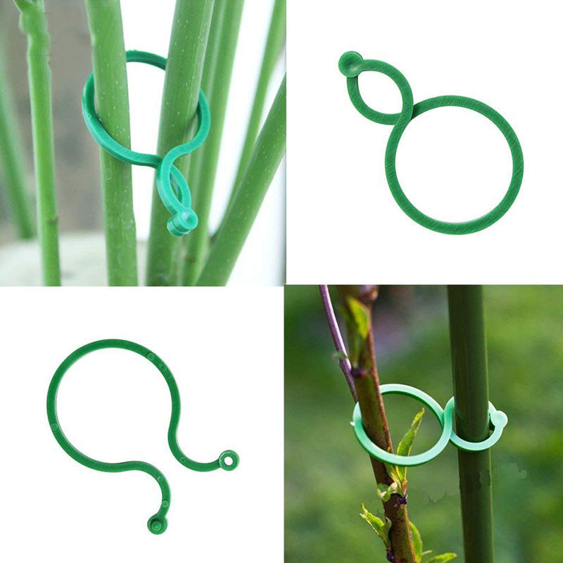 10 Pcs Plant Support Garden Clips Trellis For Vine Vegetable Tomato To Grow Upright Garden Plant Stand