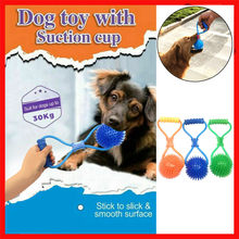 Pet Toys with Suction Cup Dog Push Toy with TPR Ball Pet Tooth Cleaning Chewing Rubber Dog Toys for Small Dogs Rubber Dog Toy(China)