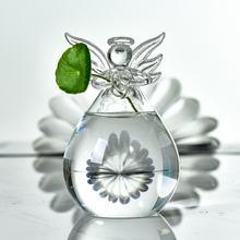 Ангел висит Стекло Цветочная ваза для растений гидропоники растения
