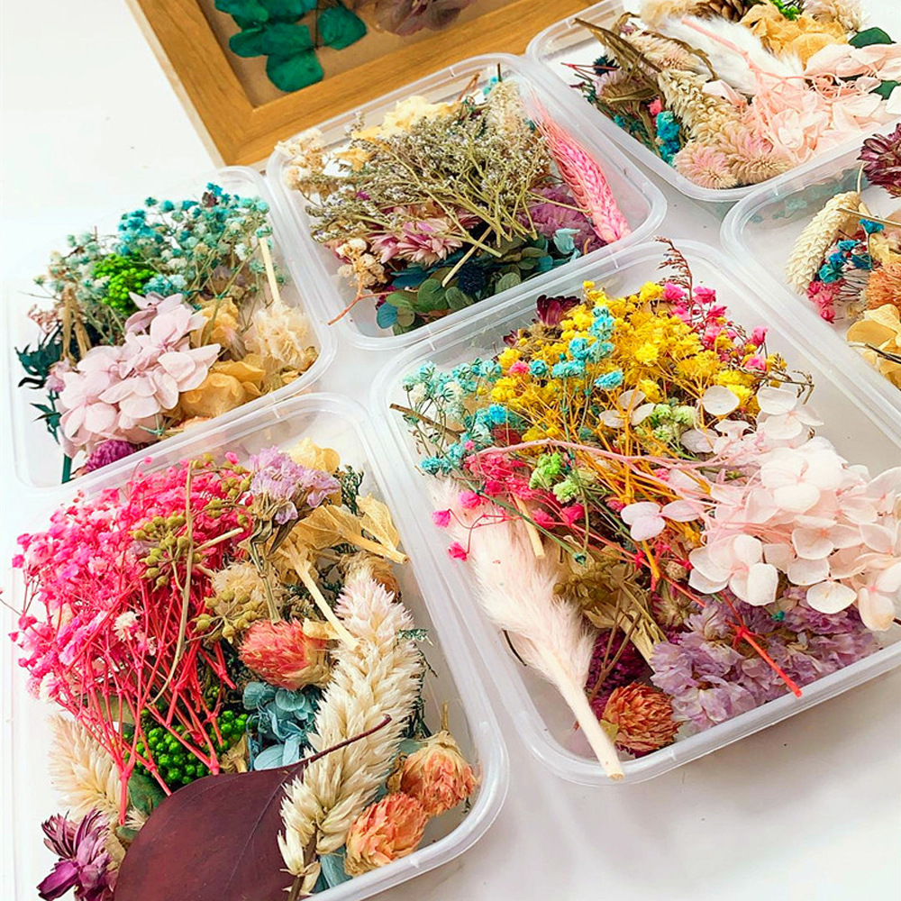 1 Bag /Box Natural Dried Flower/Plants For Diy Handicraft Epoxy Resin Charm Pendant Aromatherapy Candle(China)