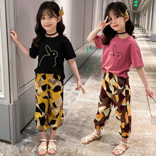 children clothing 2020 autumn girls clothes set long sleeve t shirts pants girls sport suits teen kids clothes 5 6 8 10 12 years Girls Clothes Set Summer Kids Cartoon T-shirt Pants Two Piece Suits Children Clothing Girls Tracksuit 4 6 9 10 12 13 Years