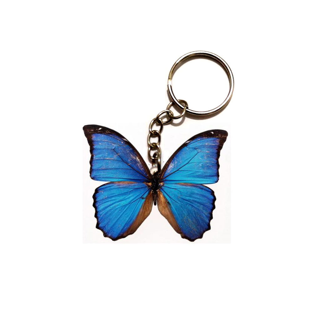 Blue Butterfly Acrylic Keychain Flying Wing Dogs Steel Keyring Pendants Gift Best Friend Key Chain Accessories Keyring Men Toy