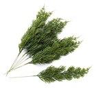 6pcs Green leaf chri...